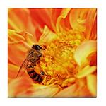 Pollination Tile Coaster