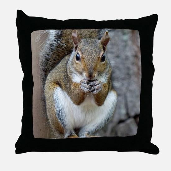 Enjoying a Treat Throw Pillow