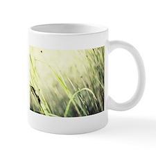 Marsh Mugs