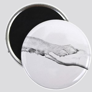 dog paw and human hand Magnets