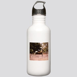 White-Tail Deer Runnin Stainless Water Bottle 1.0L
