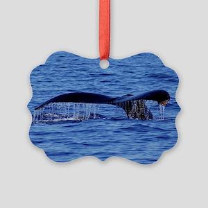 Humpback Whale Tail Maui Picture Ornament