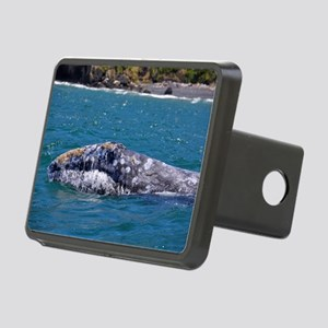 Gray Whale Rectangular Hitch Cover