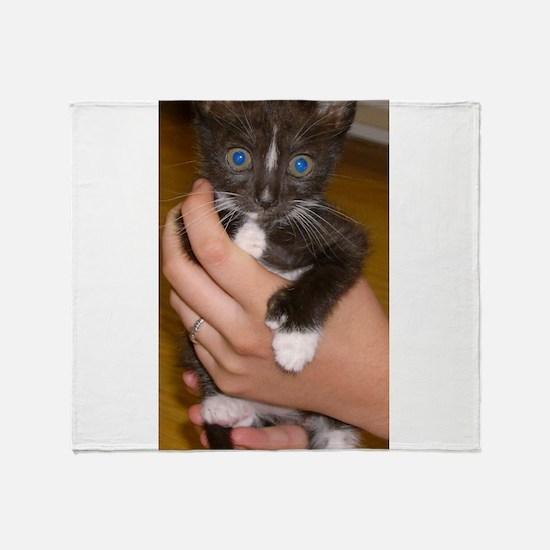 american polydactyl kitten Throw Blanket