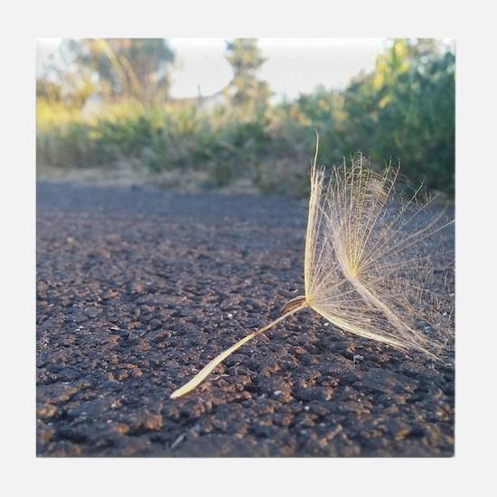 Morning Dandelion Seeds Tile Coaster