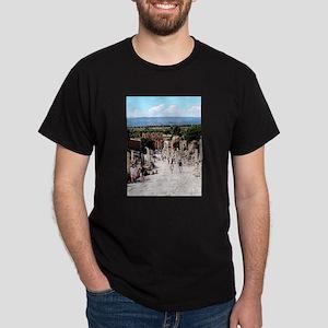 Ruins of Ephesus T-Shirt
