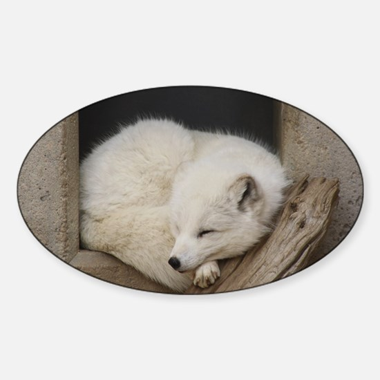 Sleeping corner Sticker (Oval)