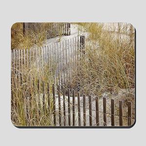 Beach Walkway Gifts Mousepad