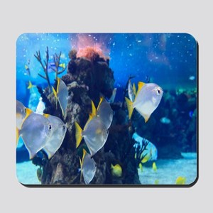Underwater Fish Merchandise Mousepad