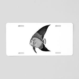 Vintage Angel Fish illustration Aluminum License P