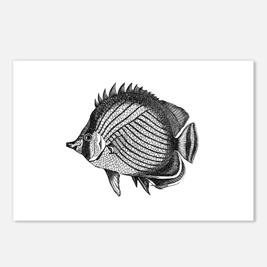 Black and white Exotic Fish Postcards (Package of