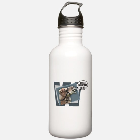 Cute Hump day Water Bottle