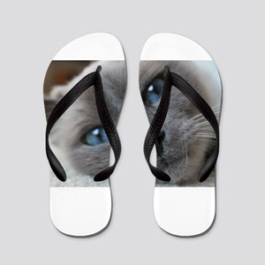 birman close up Flip Flops