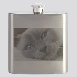 birman close up Flask