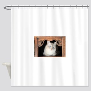 birman 3 Shower Curtain