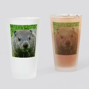 Woodchuck eating Drinking Glass