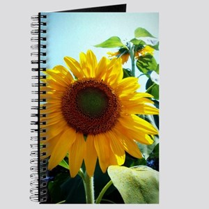 Smiling in the Sun Journal