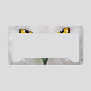 Owl with yellow eyes License Plate Holder