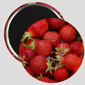 Strawberry Hills Magnet