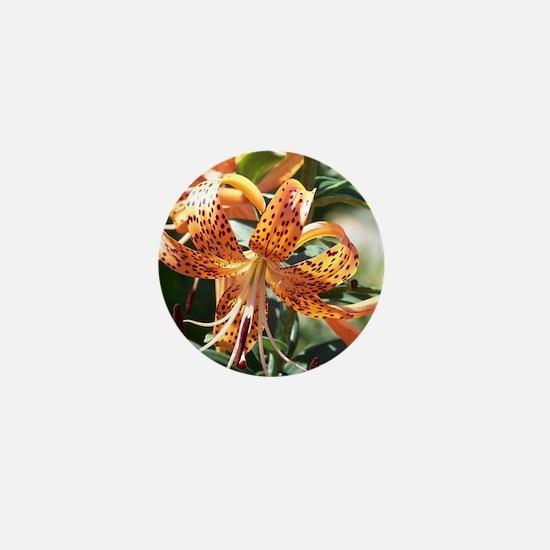 Tiger Lily Mini Button