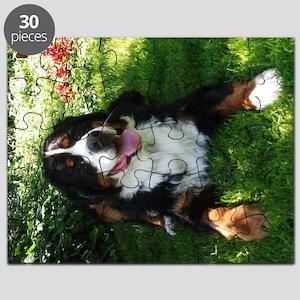 Bernese Mountain Dog in garden Puzzle