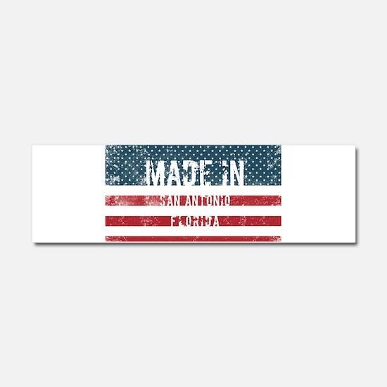 Made in San Antonio, Florida Car Magnet 10 x 3