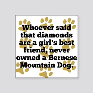 Bernese Mountain Dogs Are A Girls Best Friend Stic
