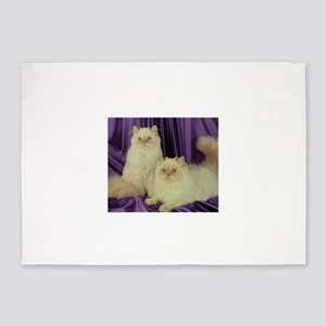 Cats Cute Twin Kittens 5'x7'Area Rug