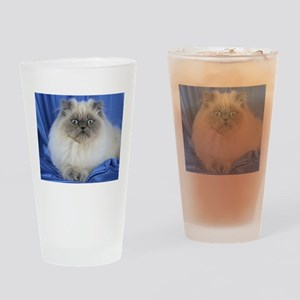Cute Funny Himalayan Cat Drinking Glass
