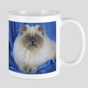 Cute Funny Himalayan Cat Mugs