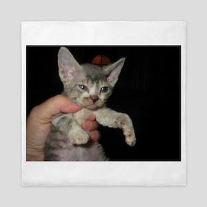 devon rex kitten Queen Duvet