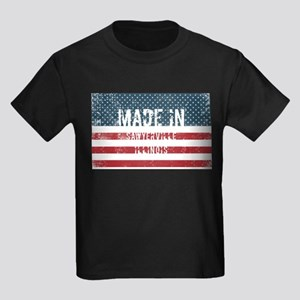 Made in Sawyerville, Illinois T-Shirt