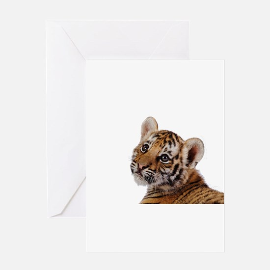 baby tiger Greeting Cards