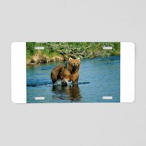 animal kodiak brown bear Aluminum License Plate