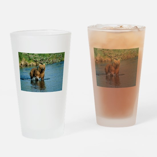 animal kodiak brown bear Drinking Glass