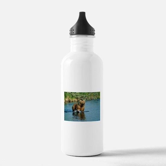 animal kodiak brown bear Water Bottle