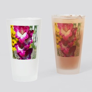 Pink and White Gladiolas Drinking Glass