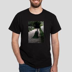 Peacock Path T-Shirt