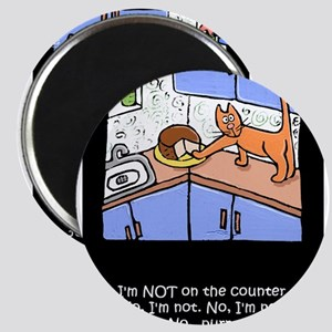 Cat on Counter Magnets