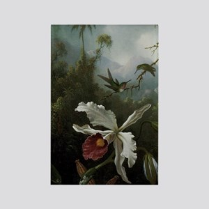Hummingbirds Above a White Orchid Rectangle Magnet