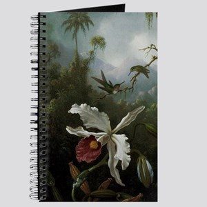Hummingbirds Above a White Orchid Journal