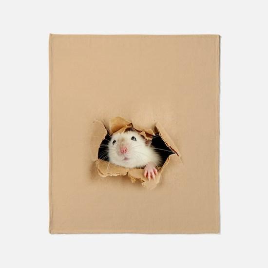 Unique Cardboard Throw Blanket