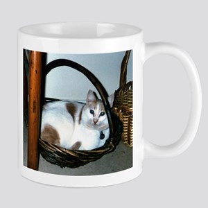 BASKET CAT Mug