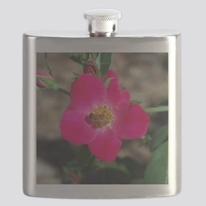 Bee on Pink Rose Flask