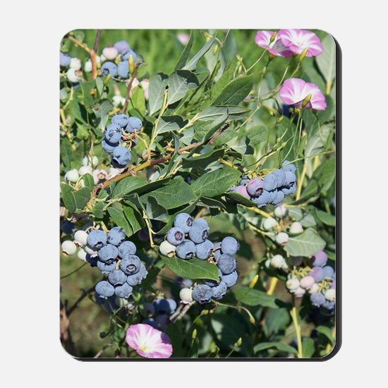 Blueberries and Morning Glories Mousepad