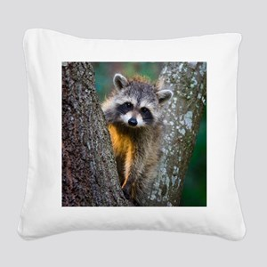 lrg_single_raccoon_clse_up.jp Square Canvas Pillow