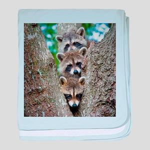 lrt_raccoons baby blanket