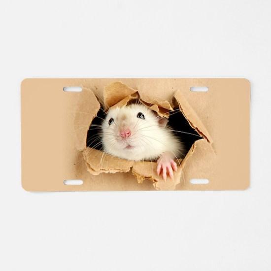 Cute Hamster Aluminum License Plate