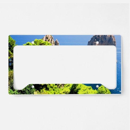 Italy, Capri License Plate Holder