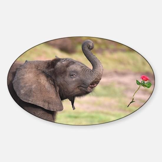 BABY LOVE  Sticker (Oval)